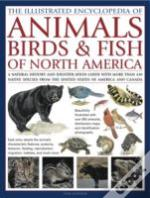 Illustrated Encyclopaedia Of Animals, Birds And Fish Of America