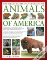 Illustrated Encyclopedia Of Animals Of America