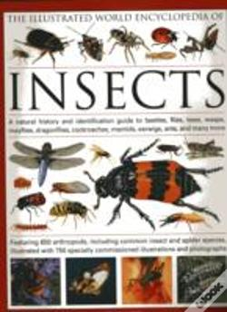 Wook.pt - Illustrated World Encyclopaedia Of Insects