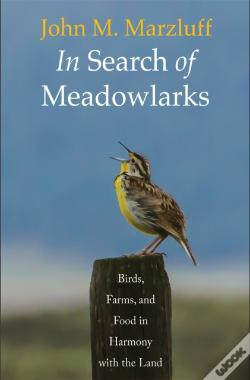 Wook.pt - In Search Of Meadowlarks
