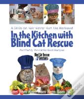 In The Kitchen With Blind Cat Rescue