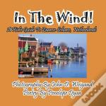 In The Wind! A Kid'S Guide To Zaanse Schans, Netherlands