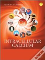 Intracellular Calcium
