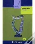 Ireland After History