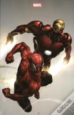 Iron Man 2013 008 Variant Cover