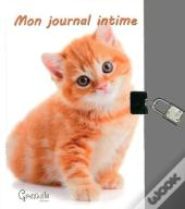 Journal Intime Chats