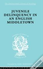 Juvenile Delinquency In An English Middle Town