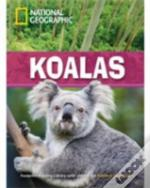 Koalas Saved!2600 Headwords