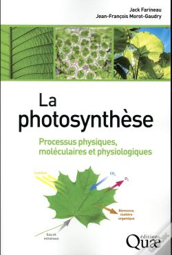 Wook.pt - La Photosynthese