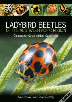 Wook.pt - Ladybird Beetles Of The Australo-Pacific Region