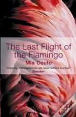 Last Flight Of The Flamingo