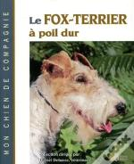 Le Fox Terrier A Poil Dur