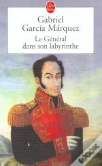 Le General Dans Son Labyrinthe