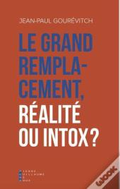 Le Grand Remplacement Realite Ou Intox ?