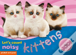 Lets' Count Noisy Kittens