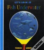 Let'S Look At Fish Underwater