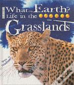 Life In The Grasslands