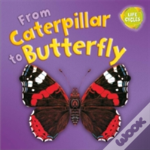 Lifecycles: From Caterpillar To Butterfly