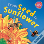Lifecycles: From Seed To Sunflower