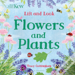 Lift And Look Flowers And Plants