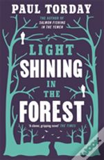 Light Shining In The Forest