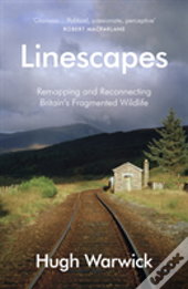 Linescapes