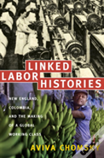 Linked Labor Histories