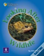 Looking After Wildlife Year 2