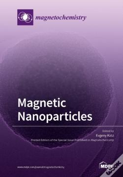 Wook.pt - Magnetic Nanoparticles