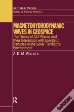 Magnetohydrodynamic Waves In Geospace