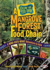 Mangrove Forest Food Chain