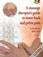 Massage Therapist'S Guide To Lower Back And Pelvic Pain