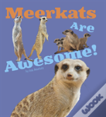 Meerkats Are Awesome