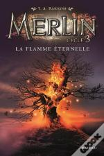 Merlin Cycle 3 - Tome 3 La Flamme Eternelle - Volume 03