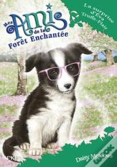 Mes Amis De La Foret Enchantee - Tome 10 La Surprise D'Eva Truffe-Flair
