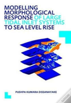 Wook.pt - Modelling Morphological Response Of Large Tidal Inlet Systems To Sea Level Rise