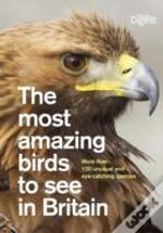 Most Amazing Birds To See In Britain