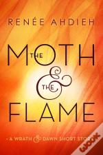 Moth And The Flame