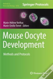 Mouse Oocyte Development
