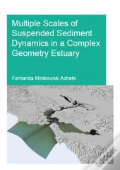 Multiple Scales Of Suspended Sediment Dynamics In A Complex Geometry Estuary