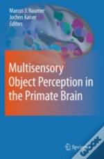 Multisensory Object Perception In The Pr