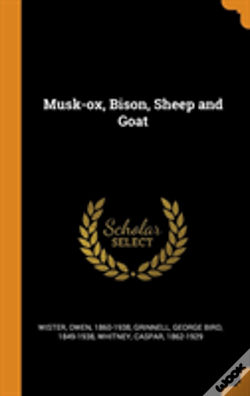 Wook.pt - Musk-Ox, Bison, Sheep And Goat