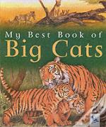 My Best Book Of Big Cats