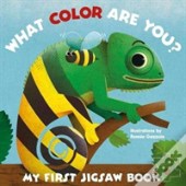 My First Jigsaw Book: What Colour Are You?
