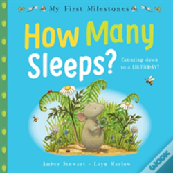 Wook.pt - My First Milestones: How Many Sleeps?