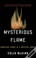 MYSTERIOUS FLAME