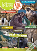 Natural History Museum Annual 2019