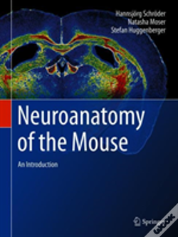 Wook.pt - Neuroanatomy Of The Mouse