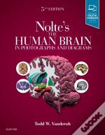 Nolte'S The Human Brain In Photographs And Diagrams