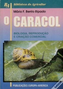 Wook.pt - O Caracol